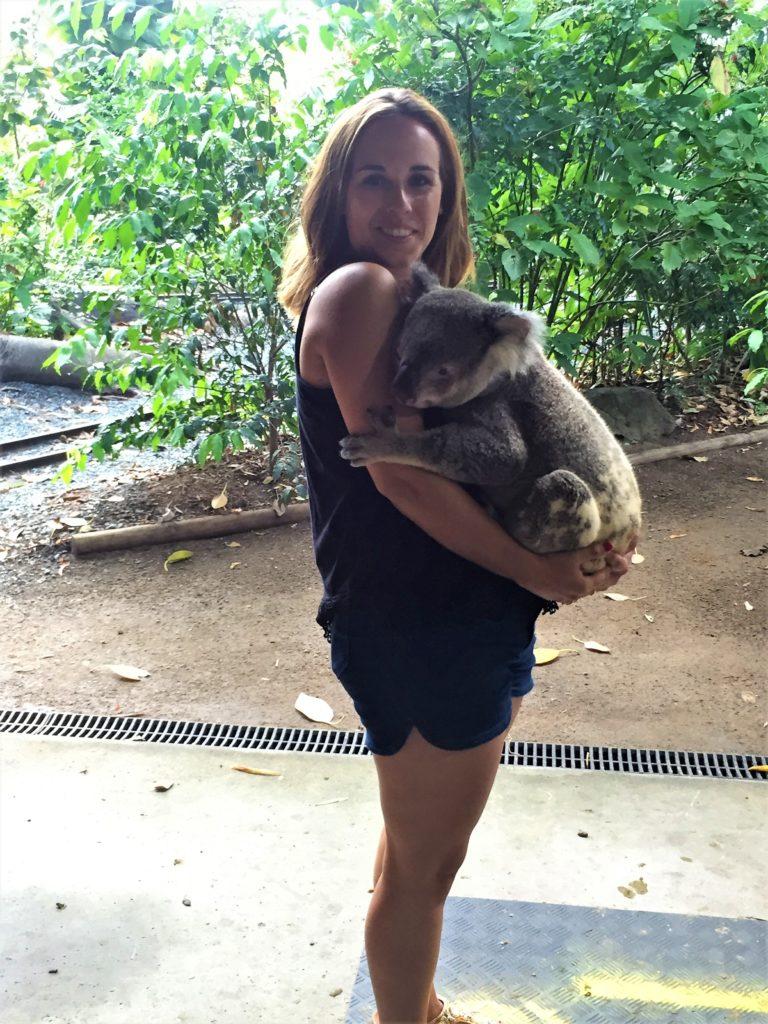 Ver Koalas en Australia