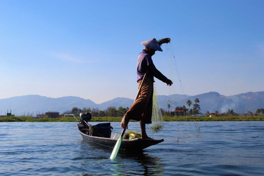 Pescador Lago Inle
