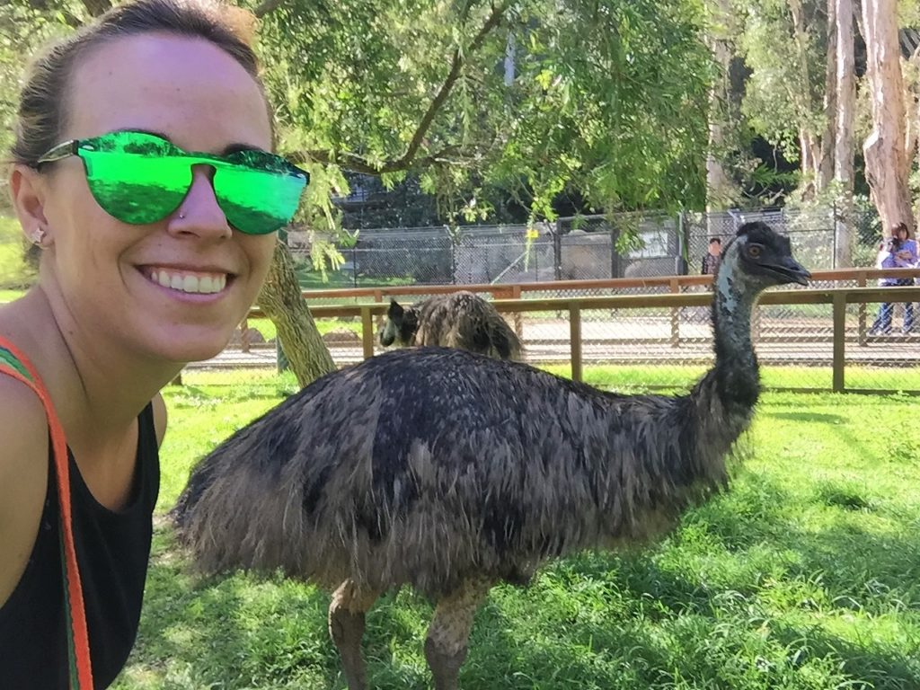 donde ver Emues en Australia